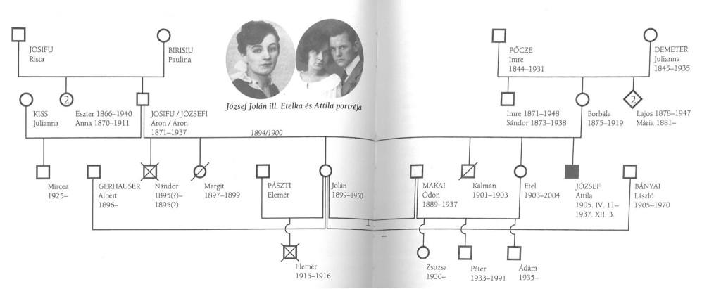 Józses Attila családfája (Czeizel, 2012, 328-329.)